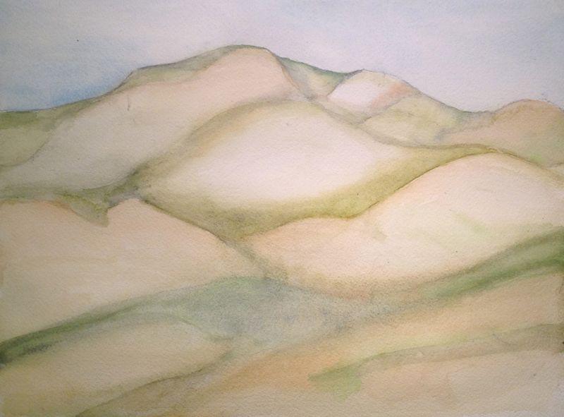 Dixon Landscape.