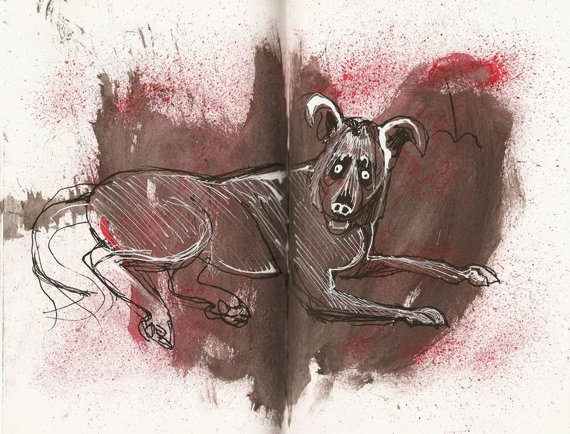 Looking at The Ralph Steadman Book of Dogs