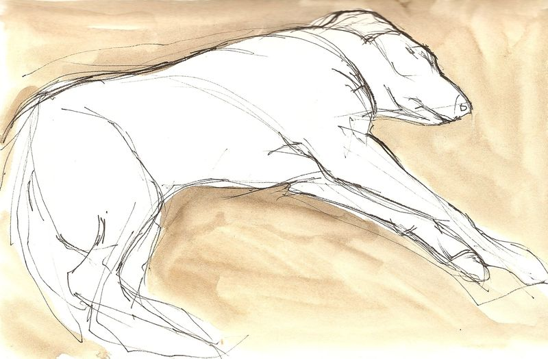 Resting Dog. - Version 2
